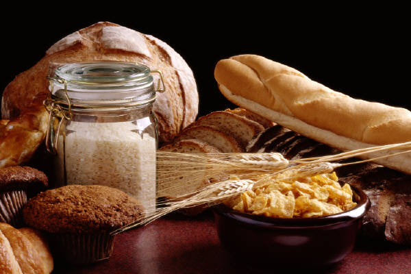 List of Grain and Grain-Free Foods (Updated 2017)