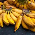 Failsafe Banana Bread