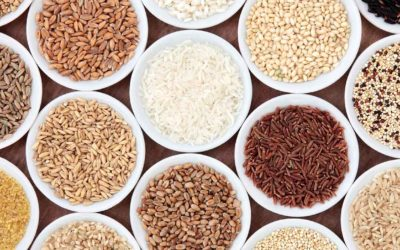 Seeds, Grains, Pseudo-cereals, Pseudo-grains and Grain Free Living