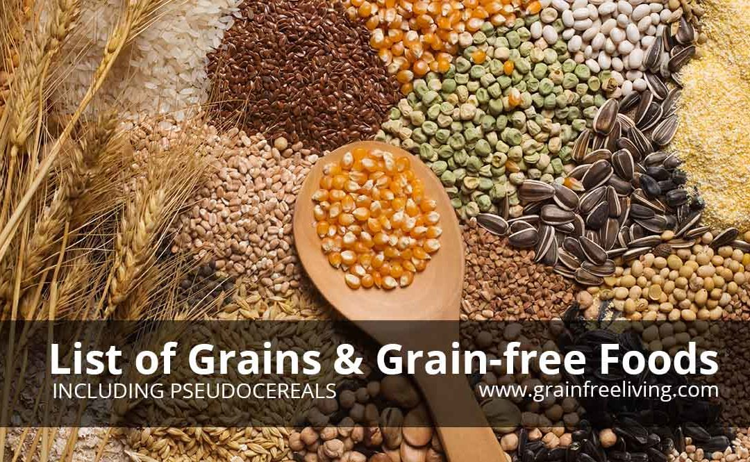 List of Grain and Grain-Free Foods